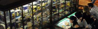 Musée Testut Latarjet d'anatomie et d'Histoire naturelle médicale